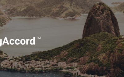 Unique X And Flix Media Deploy Advertising Accord and Movie Transit  In Brazil